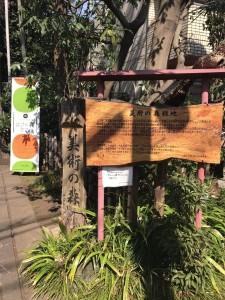 Musashino Hakenomori café 2F